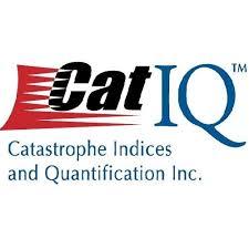 CatIQ Logo